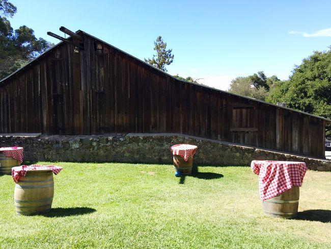 Barn Wine Barrels Checkered Table Cloth Lawn Winery Pichetti Winery Cupertino California United States Enjoying Life