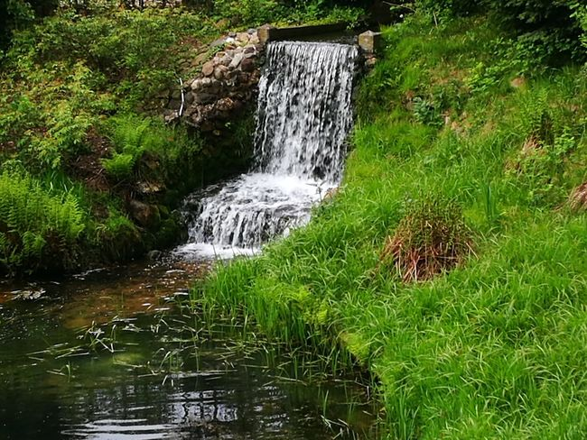 """""""One waterfall"""" Water Nature Grass No People Outdoors Day Green Color Beauty In Nature Growth Lake"""