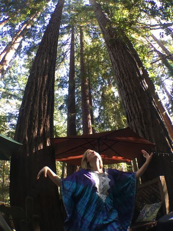 Tree Day Real People Tree Trunk Low Angle View Outdoors Sunlight Leisure Activity One Person Lifestyles Nature People Hippie Dance Caftan Tie Dye Redwoods Northern California Forest Swaying Witch Goddess Redwood Trees Redwood Forest Ritual