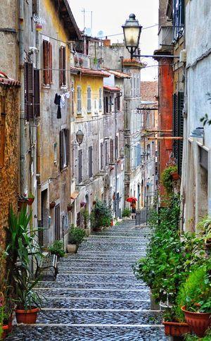 """Soggy Art Walk"" - Tivoli Houses Houses And Windows Flower Pot Flowers Italy Italia Streetphotography Street Photobydperry Tivoli Rainy Days Rain Cobblestone The Street Photographer - 2018 EyeEm Awards"