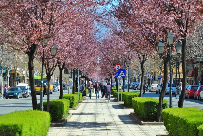 Albania Tirana Shqiperia Spring Colors Nikon