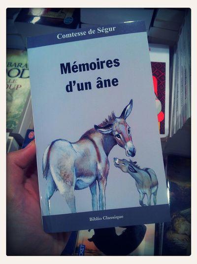 Le titre en dit tout. Bookstore Memoire Funny Donkey