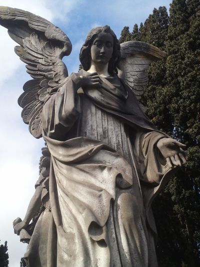 Angel......Glasnevin Dublin