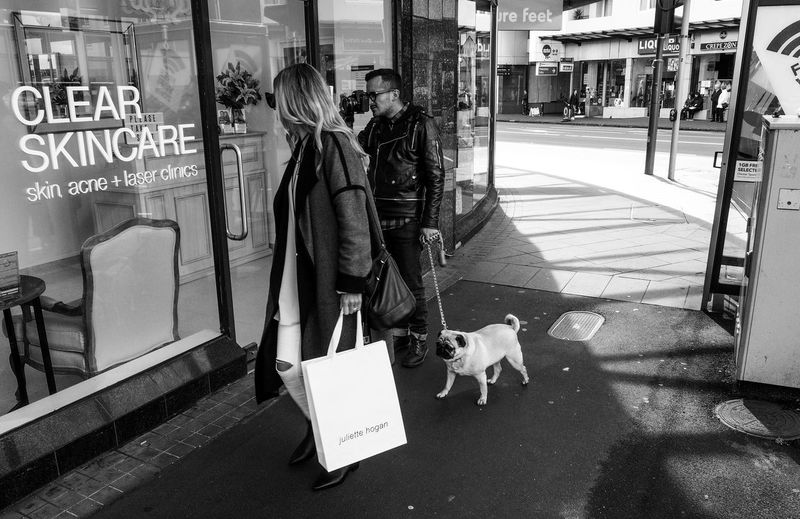 Casual Clothing City City Life Day Dog Information Sign Leisure Activity Lifestyles Mammal Medium Group Of People Outdoors Pug