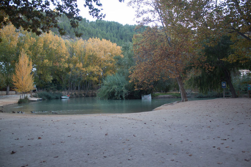Autumn Beauty In Nature Calm Change Countryside Day Growth Majestic Mountain Nature No People Non Urban Scene Non-urban Scene Outdoors Park Remote River Riverbank Riverside Scenics Season  Tranquil Scene Tranquility Tree Water
