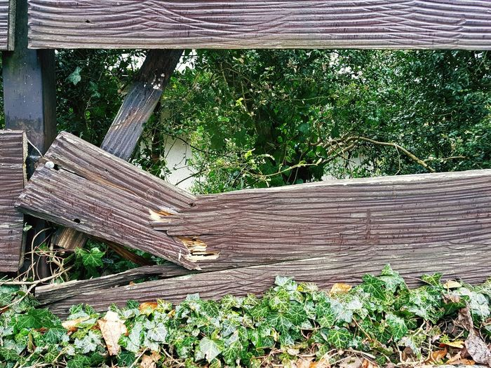 Damaged wooden fence Fence Damaged Wood - Material