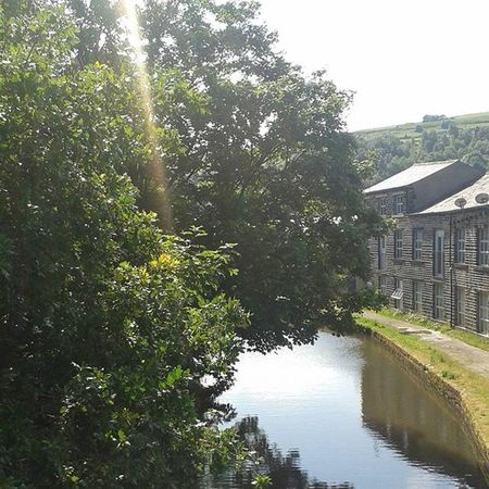 Beautiful day Summertime Sunshine Sunnyday Canal Plants Trees Summer My Own Photography Photograph Ownphotos