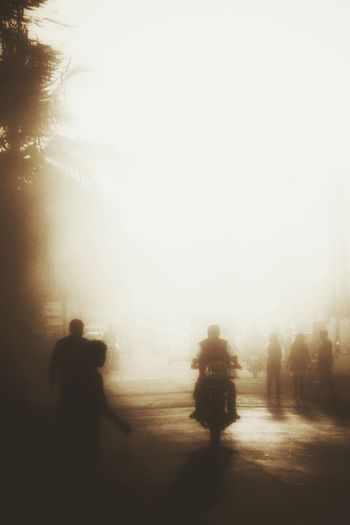 Tree Fog Real People Shadow Outdoors Noirlovers Neo Neorealismo EyeEm Ready   EyeEm Ready   EyeEm Ready   EyeEm Ready   EyeEm Ready   EyeEmNewHere EyeEm Market Trends EyeEm Team EyeEm EyeEm Maket EyeEm Market 2017 EyeEm Selects Canonphotography EyeEm Gallery Youth Photographer