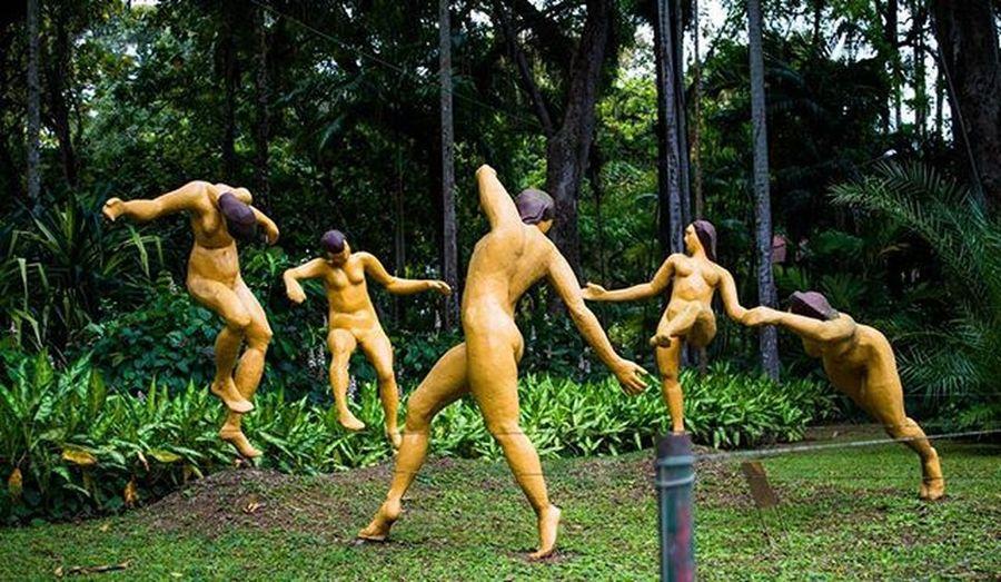 Dance and balance D3200nikon Nikonofficials Park Jardimbotanicorj