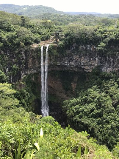 Chamarel Mauritius Chamarel Chamarel Waterfall No Filter, No Edit, Just Photography Point Of View Special View Another Point Of View Focus On Foreground View Nice View EyeEm Nature Lover EyeEm Best Shots EyeEm Selects Tree Water Waterfall Irrigation Equipment Motion High Angle View Green Color Sky Landscape Flowing Water Stream Stream - Flowing Water Scenic View Falling Water Forest Greenery The Traveler - 2019 EyeEm Awards