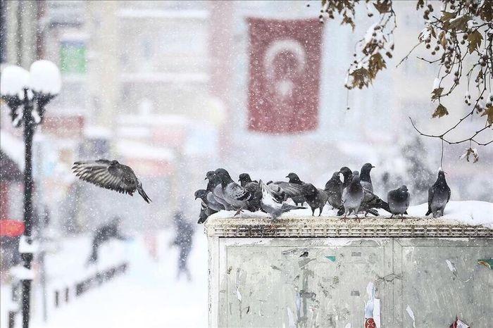 Turkey View Photography Photo 41 Like