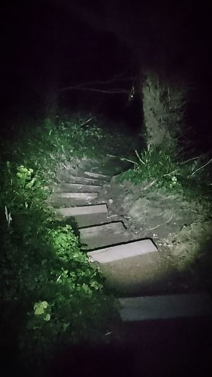 Jersey Jersey Channel Island UK Stairs Beauport Beauport Bay Bay Area Walk Walk This Way Nature Beautiful Night Night Shot Dark Scary Late Path Cliff Cliff Path