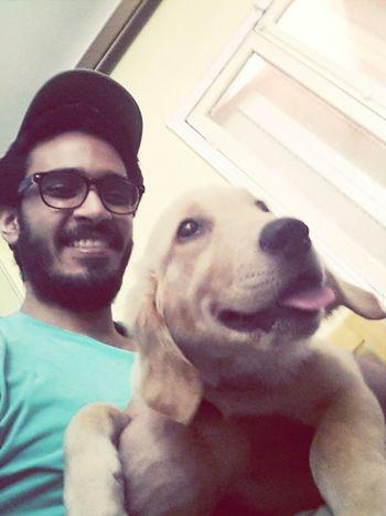Golden Retriever Selfie -Selfie ✌ with My Dog ♡