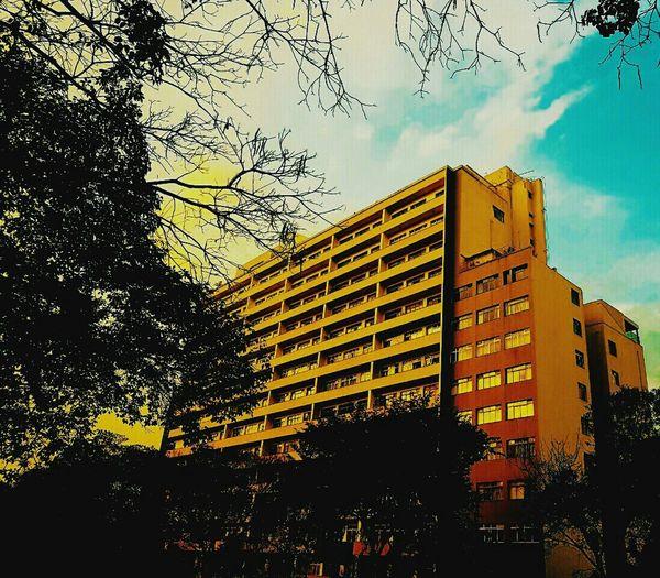 Buildings & Sky Beauty Or Polution?
