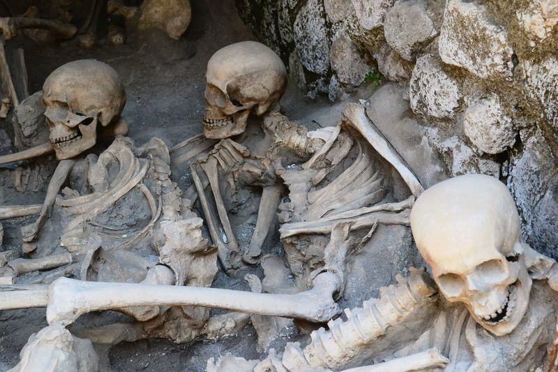 Skulls uncovered at the ruins of Herculaneum Human Skull Nature History People Anthropology History Through The Lens  First Eyeem Photo