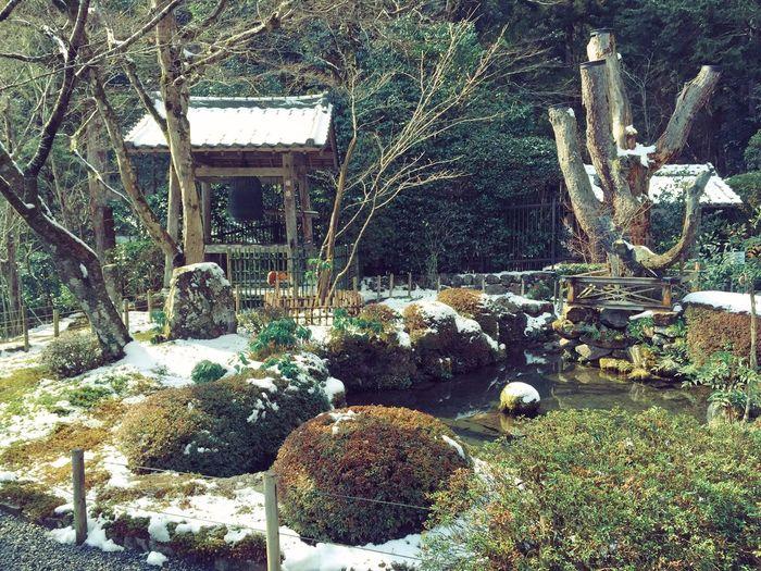 大原 京都 寂光院 大原三千院 Kyoto Japan Japanese Style Trip Travel ひとり