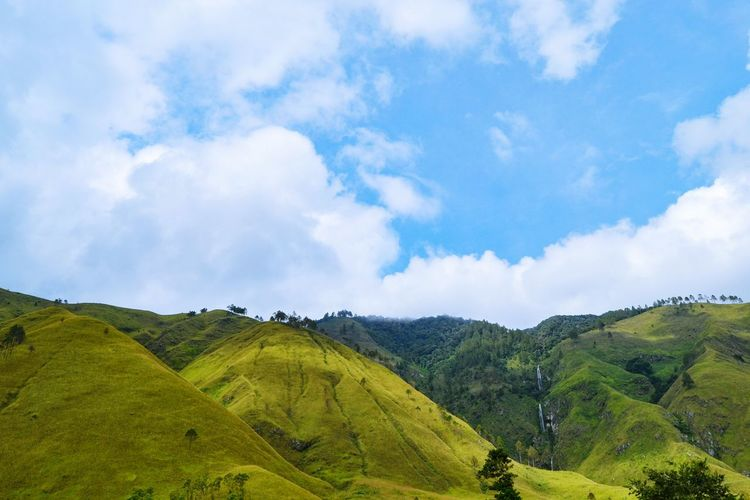 Lake Toba Lake Toba Lake Toba From Above Lake Toba Landscape Bunga Danau Toba Toba Tea Crop Tree Terraced Field Rural Scene Tree Area Beauty Forest Agriculture Hill Social Issues Lush - Description Plantation Agricultural Field Plateau Rice Paddy Tea Leaves Ho Chi Minh City Irrigation Equipment