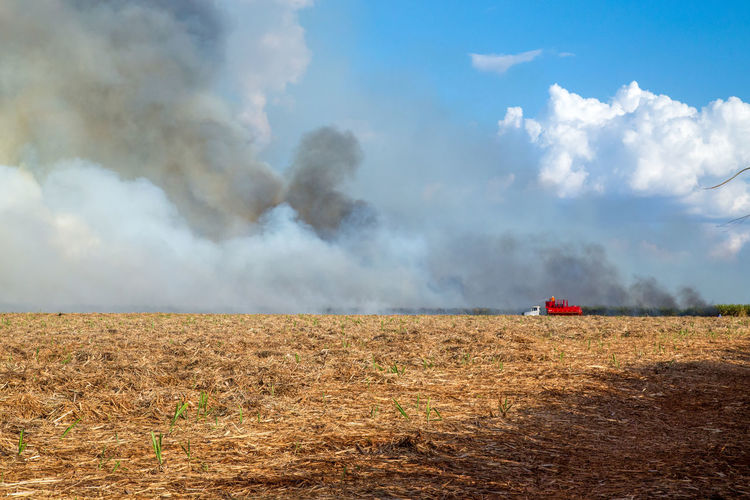 Fired Agricultural Machinery Agriculture Beauty In Nature Cloud - Sky Combine Harvester Day Environment Farm Field Harvesting Land Land Vehicle Landscape Nature No People Outdoors Plant Rural Scene Scenics - Nature Sky Smoke - Physical Structure Sugar Cane Field