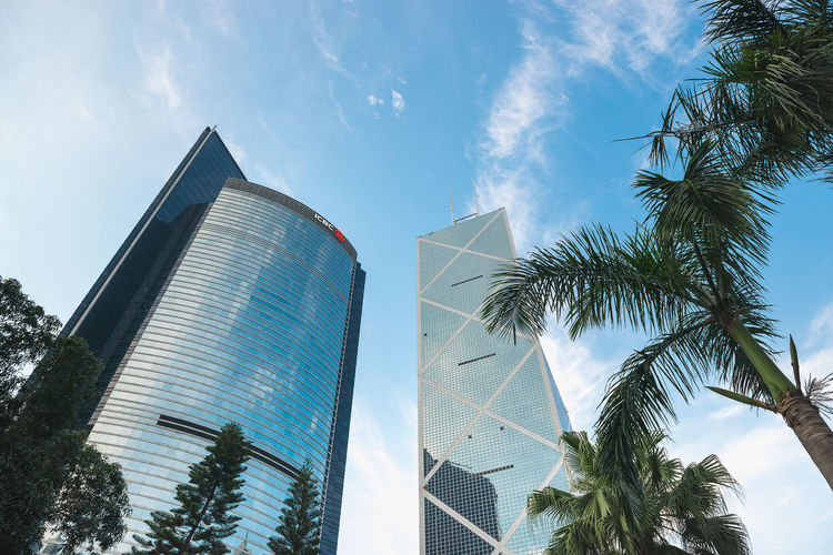Architecture Built Structure Tree Building Exterior Sky Low Angle View Building Plant Palm Tree Nature City Office Building Exterior Modern Tropical Climate Tall - High Cloud - Sky Skyscraper Day Tower Office No People Outdoors Financial District