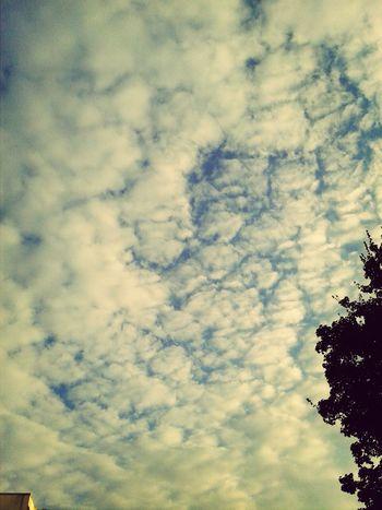 wir bleiben wach bis die Wolken wieder lila sind Wolken Lila Wolken.