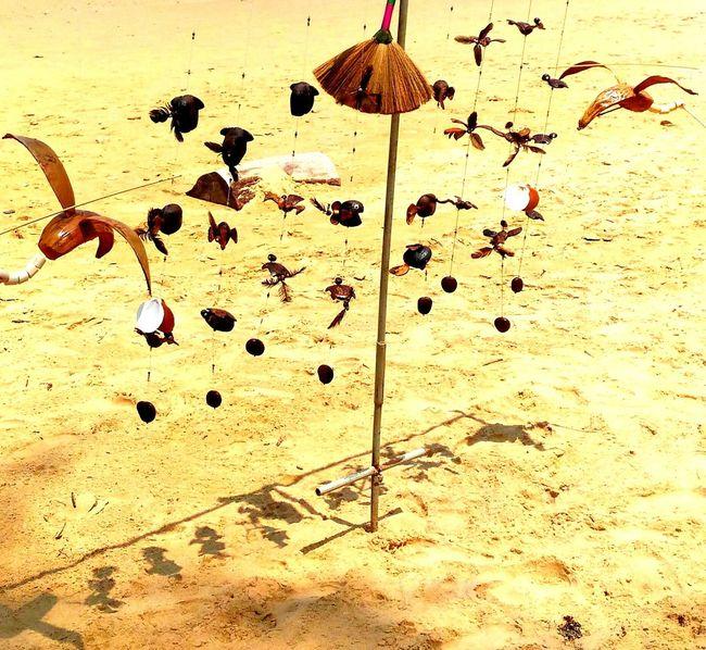wood, toy, sea, sand, bird
