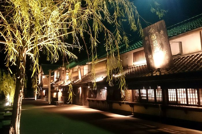 栃木 羽生 Night Illuminated Travel Tree Japan Japanese Culture Japanese  お出掛け Japan Photography JapaneseStyle Japan Photos Tree Hanyu Tochigi.japan Japanese Building