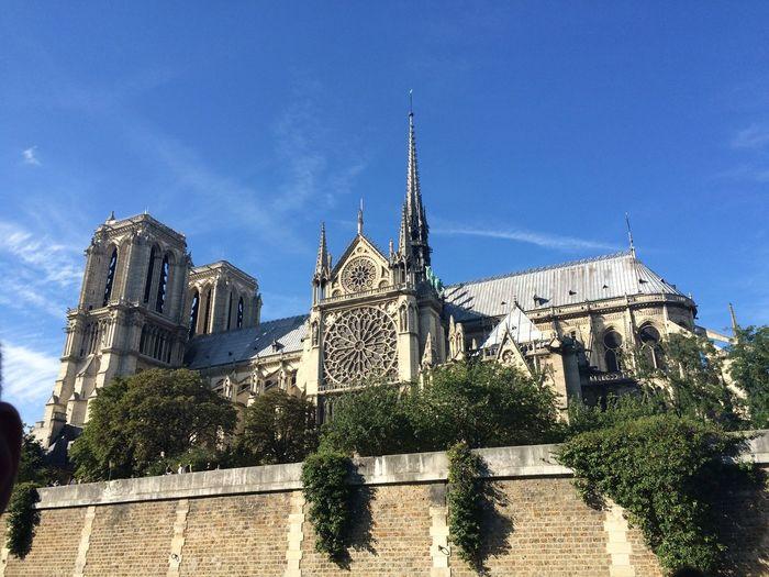 Low angle view of building against blue sky notre dame france paris