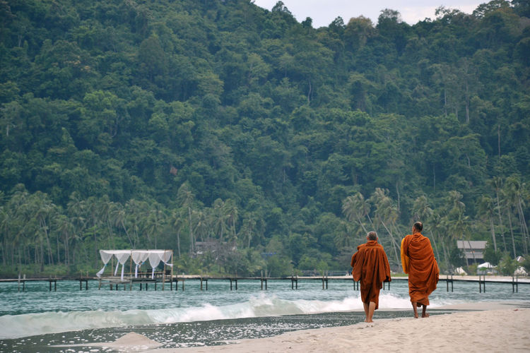 Rear view of monks walking at beach y trees