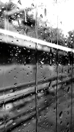Rainy Day on the train by FeBird