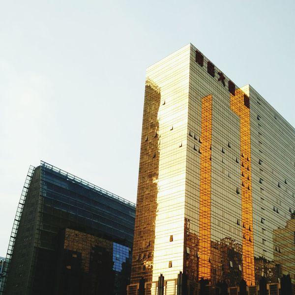 Building Office Building Golden Landscape