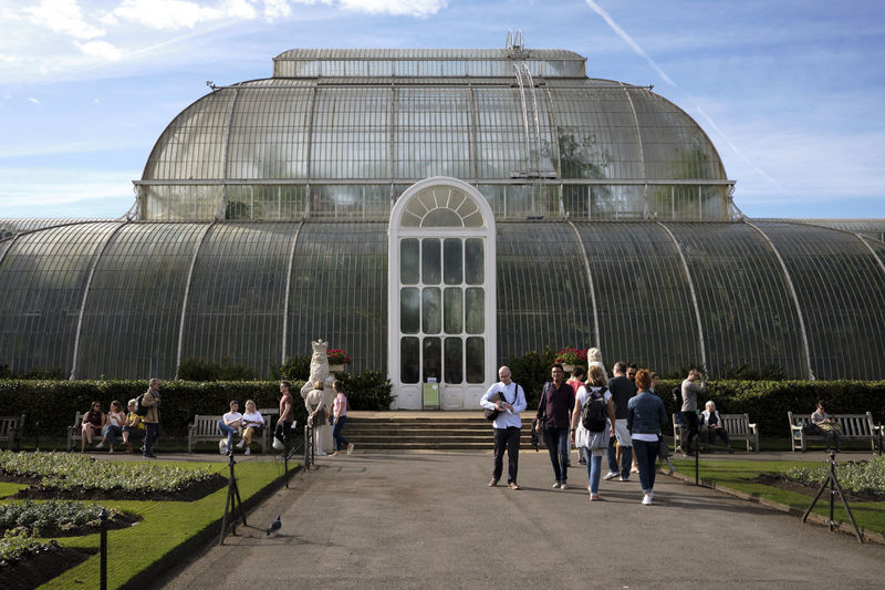 Kew Gardens, London UK - 2018 Nature Day Kew Gardens London Conservatory Plants Architecture Built Structure Glass - Material Green House Group Of People Men Sky Real People Crowd Building Exterior Large Group Of People Cloud - Sky Adult Outdoors Women Travel Lifestyles Travel Destinations City