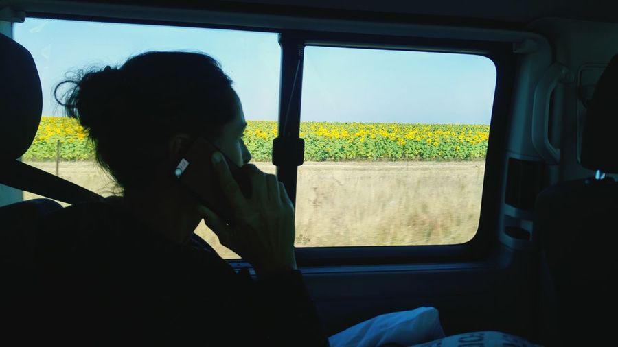 Man photographing through car window