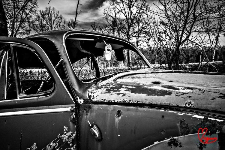 Hanging Out Blackandwhite Photo Photoyourworld