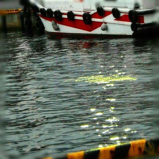 ✨ 港の夕暮れ時🎶☺ When the harbor of dusk🎶☺ ※ ※ 名古屋港 Port_of_Nagoya 日本 Japan Aichi Nagoya 夕焼け Sunset 夕暮れ Dusk 自然 Nature 安らぎ Peace 眩しい Dazzling 綺麗 Beatiful 風景 Landscape ✨ View_Japan_nagoya_mitu