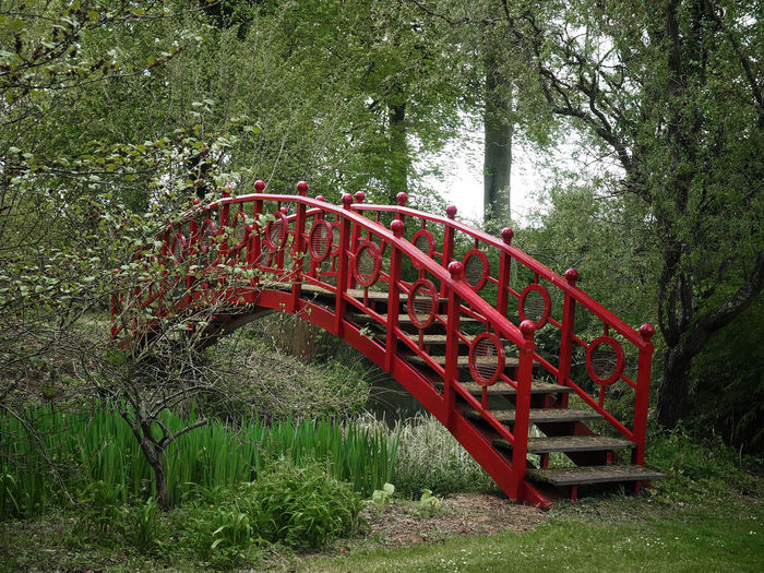 Red Japanese Bridge - Thenford House. Japanese Bridge Beauty In Nature Bridge Bridge project Landscape Nature Olympus Images Outdoors Park - Man Made Space Red Thenford House Tree