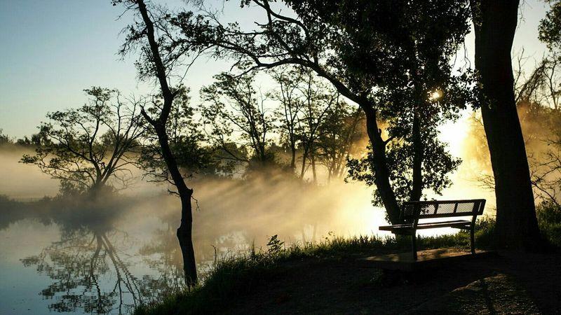 Sunrise Fog Silhouette Reflection Park Bench