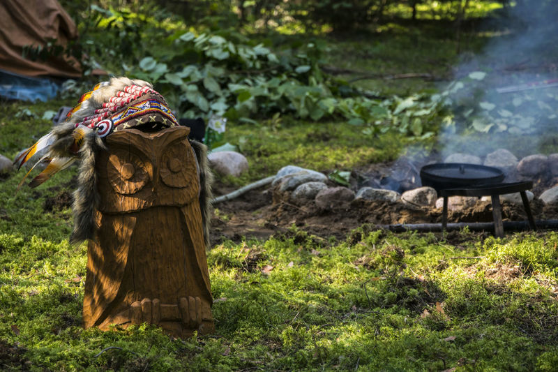 Owl near fire Camping Day Field Fire Green Color Native American Nature No People Outdoors Owl