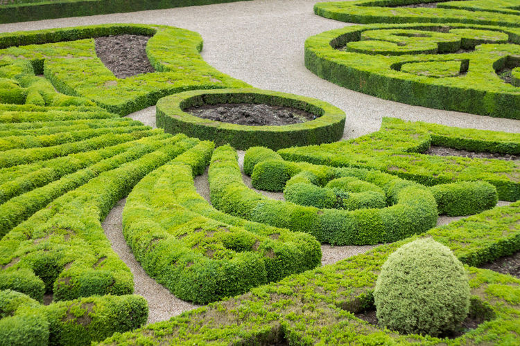 High Angle View Of Hedges In Formal Garden