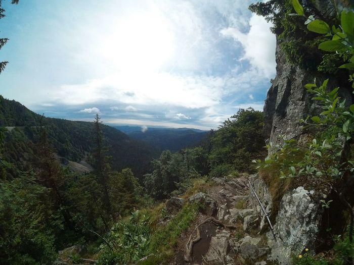 Nature On Your Doorstep Vosges Sentier Des Roches Gerardmer Balade Les Vosges Landscape
