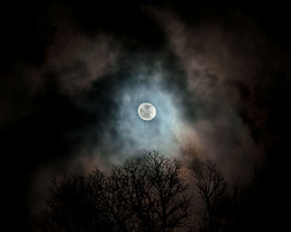 first moon shot // Moon Moonlight Atmospheric Mood Cloud - Sky Cloudscape Cloudy Cold Dark Dramatic Sky Moody Sky Mystery Night Outdoors Sky Wood