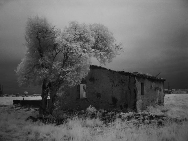 Abandoned Country House Architecture Beauty In Nature Building Exterior Built Structure Day Grass Infrared Photo Infrared Photography Landscape Nature No People Outdoors Sky Tree