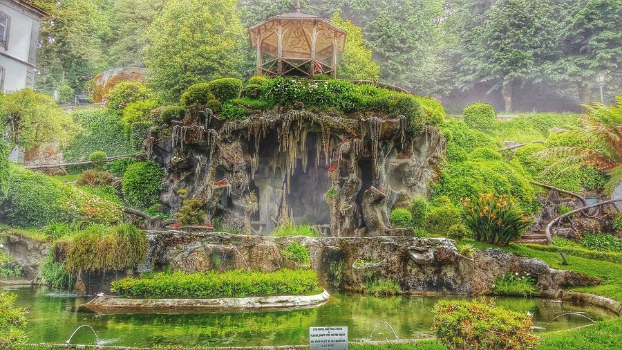 Coin lake and fresh water fountain Hanging Out Water Cave Freshness Trees Relaxing Taking Photos Bomjesus Views Green Enjoying Life Braga Nature Outdoors