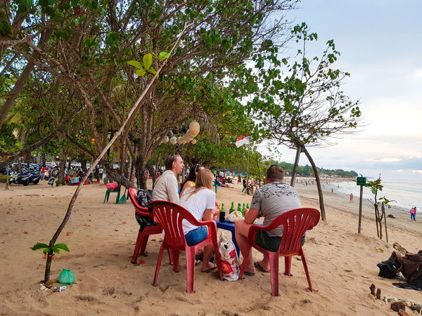 Beach Sand Tree Enjoyment Large Group Of People Togetherness Friendship Adult Leisure Activity People Men Fun Sitting Vacations Summer Outdoors Women Relaxation Lifestyles Sea