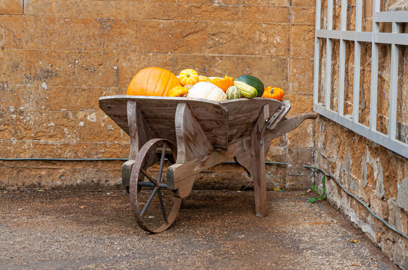 Horse cart against brick wall
