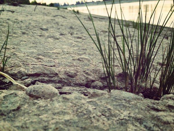 Grass Stone EyeEm Best Shots Taking Photos