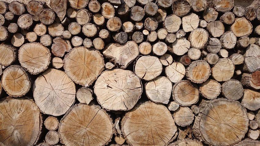 Stacked wood Dry Pile Wooden Fold Work Working Tree Log Log Firewood Woodpile Energy Nature Cut Wood - Material Woodpile Tree Ring Stack Wood - Material Pattern Textured  The Architect - 2018 EyeEm Awards