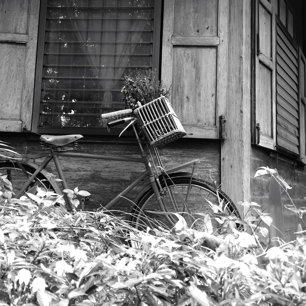 built structure, architecture, building exterior, building, day, plant, no people, house, nature, window, chair, abandoned, outdoors, seat, wood - material, front or back yard, absence, basket, obsolete, residential district, wheel