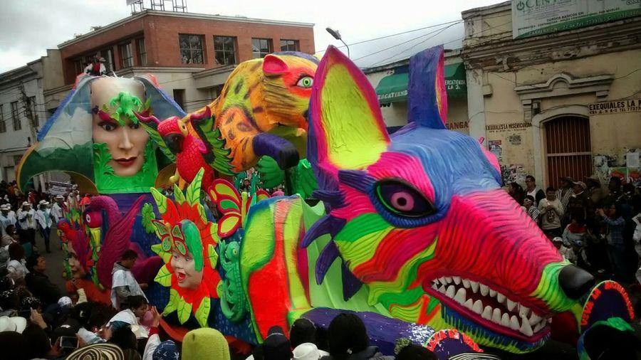 Taking Photos Enjoying Life Carnavales2014 Art
