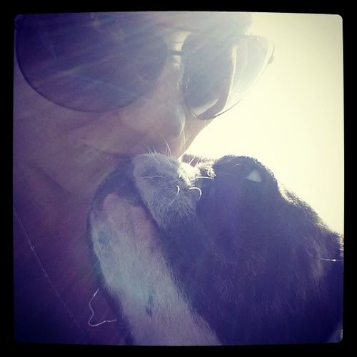 A Girl And Her Dog Frenchie #doglover  Frenchie Dog Kisses Sunrays