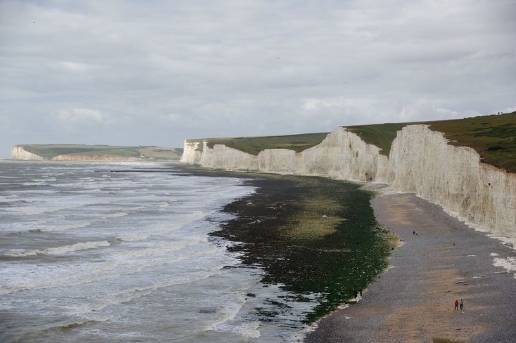 Nature Beach Water Day Sky Cloud - Sky Sand Outdoors Scenics Low Angle View Landscape Travel Destinations Backgrounds Birling Gap Seven Sisters England, UK Beauty In Nature People
